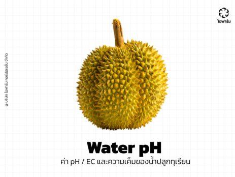 ค่า pH น้ำปลูกทุเรียน